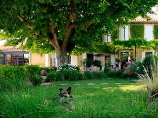 Mediterranean style gardens by CONCEPTUELLES PAYSAGE ET DECORATION Mediterranean