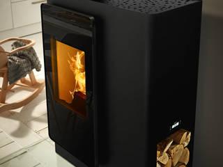 RIKA Innovative Ofentechnik GmbH Salas/RecibidoresChimeneas y accesorios Hierro/Acero Negro