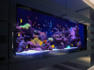 Richmond Residence Aquarium Architecture Ruang Keluarga Modern