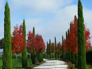 Classic style gardens by Studio Botanico Ventrone Dr. Fulvio Classic
