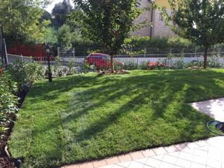 Mediterranean style gardens by Studio Botanico Ventrone Dr. Fulvio Mediterranean