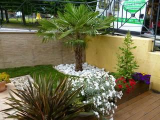 Modern style gardens by Studio Botanico Ventrone Dr. Fulvio Modern