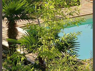 Jardin urbain: Jardin de style  par Végétal Attitude