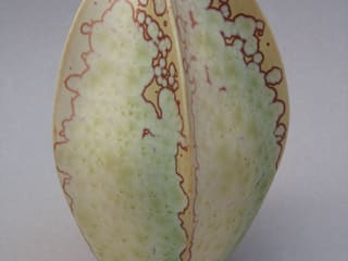 Coloquinthes en porcelaine:  de style  par Lambeau Céramique