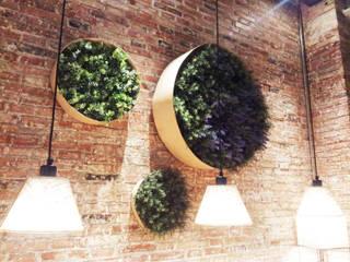 Jardines verticales orgánicos:  de estilo  de bossvi