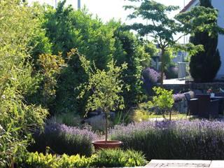 Garten Garten im Landhausstil von Massive Wohnbau GmbH und Co. KG Landhaus