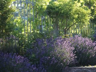 Vườn phong cách đồng quê bởi Massive Wohnbau GmbH und Co. KG Đồng quê
