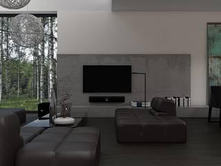 Salas de estar modernas por Zeler Design Moderno