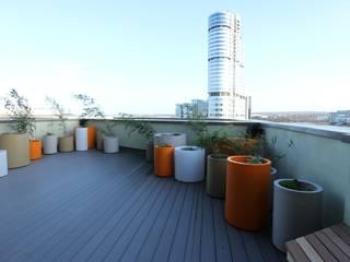 Vibrant Roof Terrace Modern Terrace by Yorkshire Gardens Modern