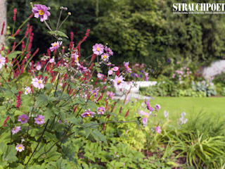 moderne Tuin door Strauchpoeten