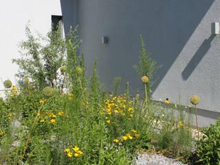 Strauchpoeten:  tarz Bahçe