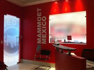 MAMMOET: Estudios y oficinas de estilo  por Liferoom