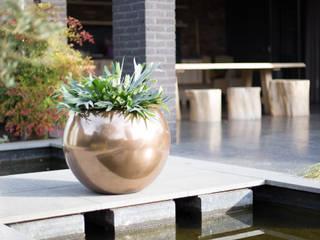 GLORY: modern  von fleur ami GmbH,Modern