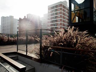 Bruxelas 모던스타일 발코니, 베란다 & 테라스 by Camila Vicari Arquitetura da Paisagem 모던