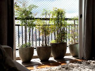 Vanderlei Balcones y terrazas de estilo moderno de Camila Vicari Arquitetura da Paisagem Moderno