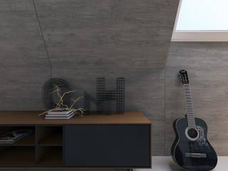 Industrial style media rooms by Aleksandra Kostyuchkova Industrial
