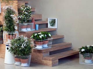 Pflanzenfreude.de Interior landscaping