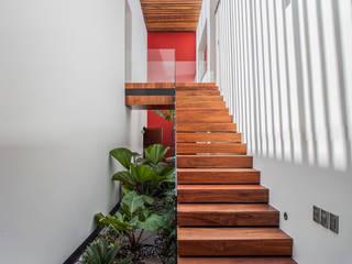 Casa de los 5 Patios: Jardines de estilo  por Almazan y Arquitectos Asociados