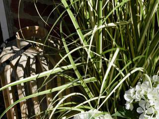 Escala Concept Store Balconies, verandas & terraces Plants & flowers