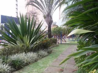 projetos: Jardins  por artverde- i.m.souza paisagismo ltda,Moderno