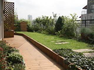 Modern Bahçe 푸르네 Modern