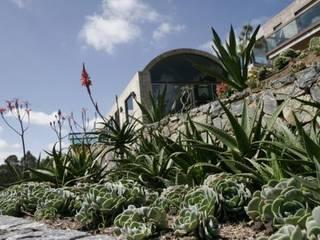 MU paisajistas Modern garden
