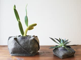 Flor De Fieltro HouseholdPlants & accessories Natural Fibre Grey