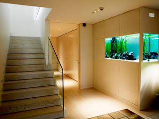 modern  von ADn Aquarium Design, Modern