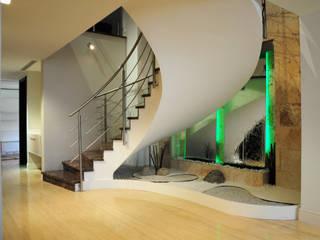 ห้องโถงทางเดินและบันไดสมัยใหม่ โดย TRIBU ESTUDIO CREATIVO โมเดิร์น