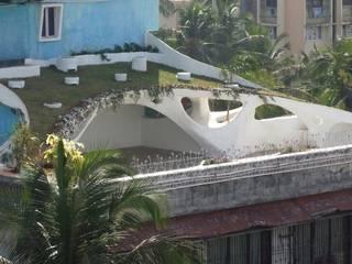 Rooftop Garden ariel view:  Garden by The White Room