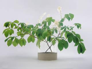 "Beton Vase ""Tara"" in flach:   von BETONIU GmbH"