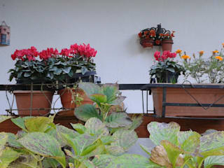 immobiliare sublacense Balconies, verandas & terraces Plants & flowers
