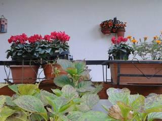 immobiliare sublacense ระเบียง นอกชานต้นไม้ ดอกไม้