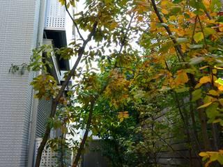 作品: 株式会社ナカハラガーデニングが手掛けた庭です。