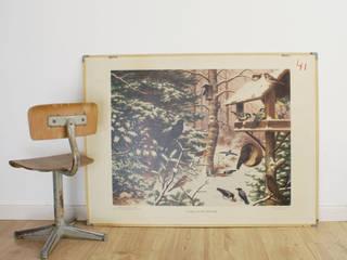 Vogels in de winter/vissen: Oude dubelzijdige schoolplaat van Koekkoek. Vintage/retro poster op karton :   door Flat sheep