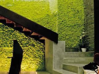 Naturadesign - Pareti vegetali:  in stile  di Nicola Sarti Lab,