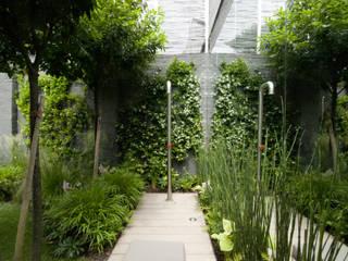 Nowoczesny ogród od SDC-Milano Nowoczesny