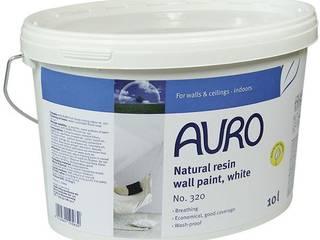 Pitture per interni 100% naturali, atossiche, certificate. di ProgettoBIO.it Moderno