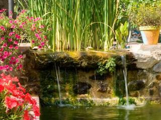 Kolam Renang Modern Oleh jardinista Modern