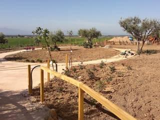 Giardino sensoriale_2014 Giardino in stile mediterraneo di Studio Angius - Pisano Mediterraneo