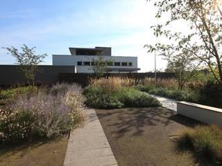 Das komplette Programm um das Haus herum Moderner Garten von Ecologic City Garden - Paul Marie Creation Modern