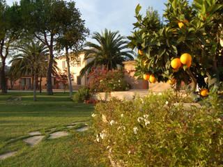 A due passi dal Mare Giardino in stile mediterraneo di GAAP Studio Giorgio Asciutti Architetto Paesaggista Mediterraneo