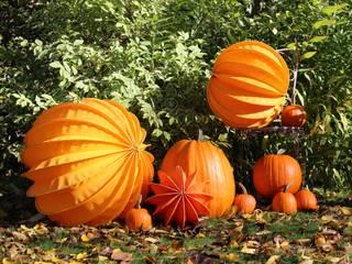 Der Barlooon als Gartendekoration im Herbst: ausgefallener Garten von Barlooon Germany GmbH
