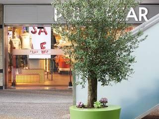 MOODULAR Moderne Einkaufscenter Grün