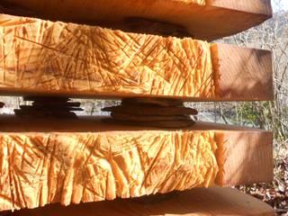 Grain de bois: Jardin de style  par Cécile H