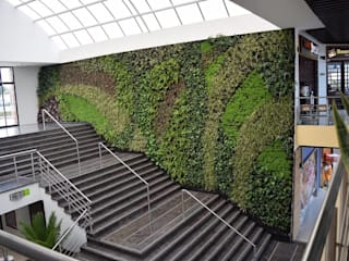 Muro Verde Centro Empresarial Green Hills: Jardines de estilo  por Verde & Verde Ingenieros & Arquitectos SAS, Moderno