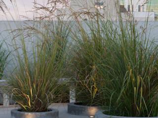 Terraza: Terrazas de estilo  por Estudio de iluminación Giuliana Nieva