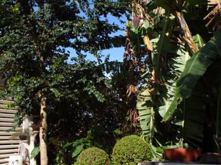 Paisagismo - Residência Alphaville Tamboré 3 Studio 262 - arquitetura interiores paisagismo Jardins tropicais