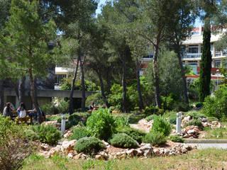 Sentier découverte de la biodiversité des Calanques: Ecoles de style  par Landscape Design Environnement