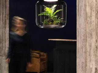 Mygdal Plantlamp: modern  von Nui Studio,Modern